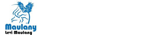 Levi Maulany Logo